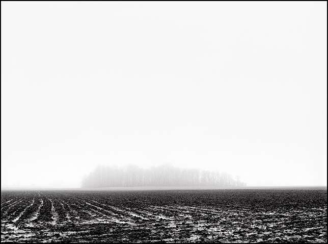 A stand of trees is visible through the mist across a plowed cornfield in this landscape scene on a rainy and foggy February day along Branstrator Road in southwest Allen County, Indiana